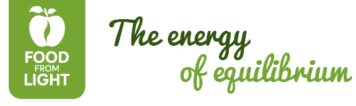 Food From Light | The energy of equilibrium